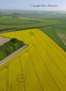 YarnBury Castle Crop Circle 1