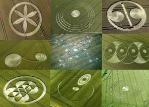 Crop Circle Watch
