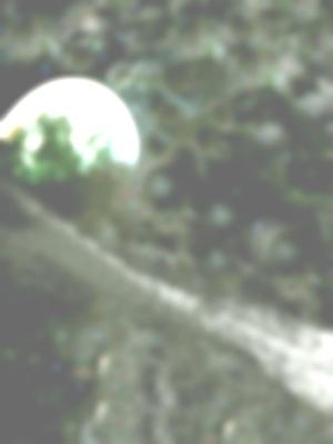 spiritual war -1.jpg