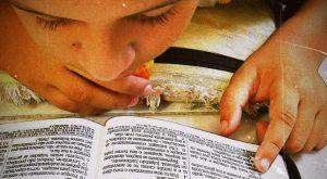 boy-reading-Bible-Flickr